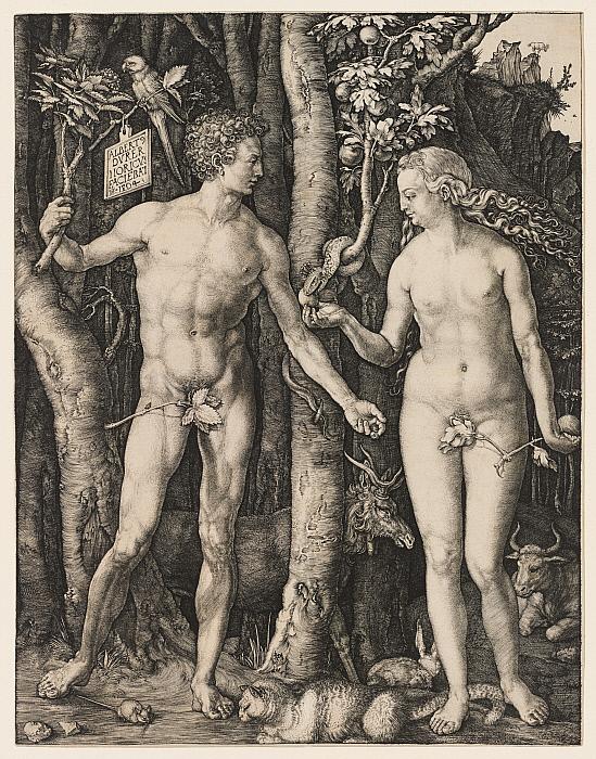 Adam and Eve Slider Image 1