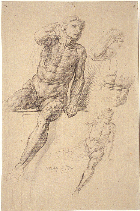 Studies of a Seated Male Nude