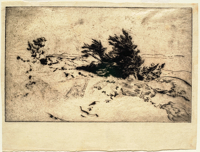 Coastal Landscape with a Clump of Windswept Trees in the Center