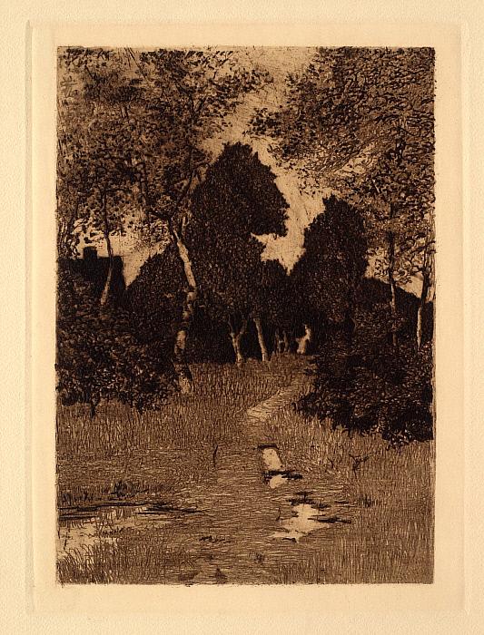 Birkenwaldchen