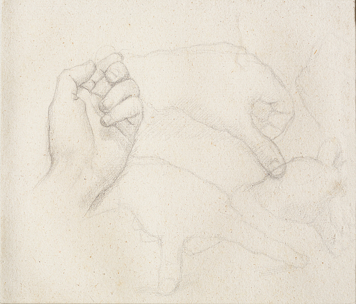 Five Studies of a Hand Slider Image 1
