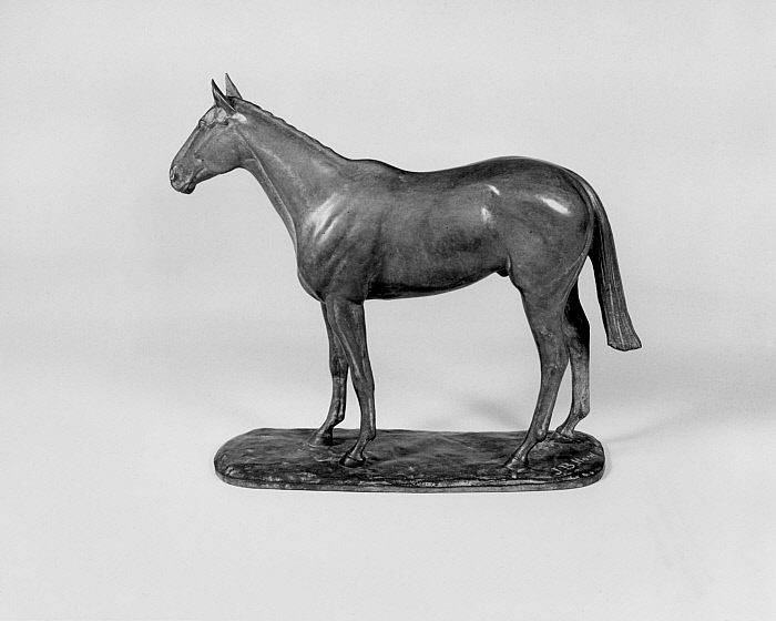 Thoroughbred Horse (Never Say Die)