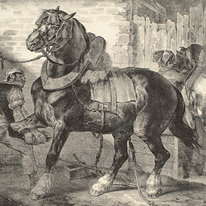 A French Farrier