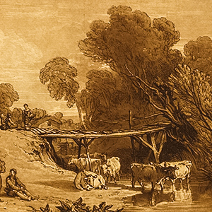 Bridge and Cows