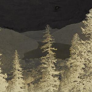Nynee Tal, View of Lake Through Trees